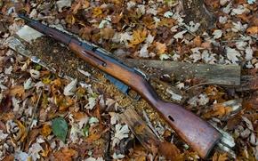 Picture rifle, Mosin, store, M44