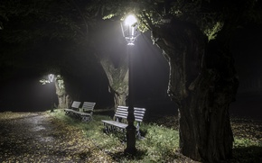 Picture night, the city, Park, bench