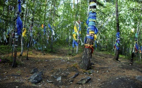 Picture summer, nature, Baikal, Burhan