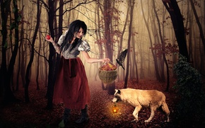 Picture forest, girl, basket, apples, wolf