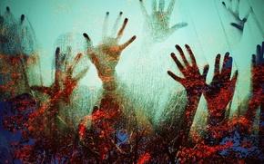 Wallpaper tree, color, hands