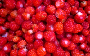 Picture delicious, bright, strawberries, Food, summer, food