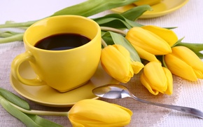Picture flowers, flowers, cup, Cup, yellow, coffee, tulips, tulips, coffee, breakfast