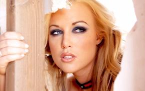 Picture girl, model, makeup, Kayden Kross