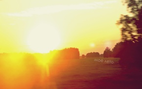 Picture field, summer, the sun, light, trees, flight, joy, happiness, orange, bright, my summer