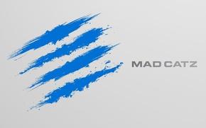 Picture blue, games, hi-tech, mad catz
