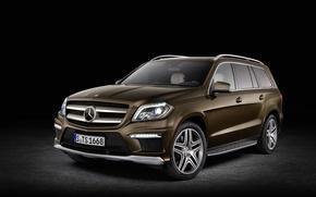 Picture Mercedes Benz, Bluetec, GL 350