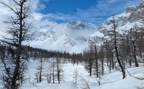Picture winter, the sky, snow, trees, landscape, mountains