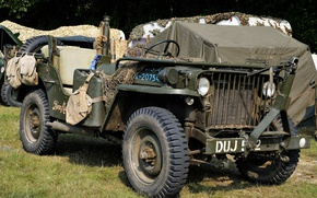 Picture car, Jeep, high, patency, Willys MB