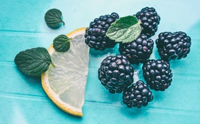Picture berries, lemon, fruit, mint, BlackBerry