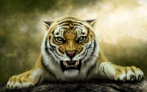 Picture tiger, predator, grin, Photoshop, Нelena