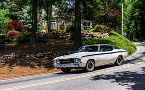 Picture road, car, machine, forest, house, tree, sport, Chevrolet, Chevrolet, old, sport, USA, USA, house, white, …