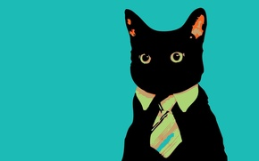 Wallpaper minimalism, Cat, tie, looks