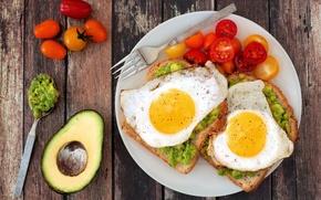 Picture Board, plate, bread, spoon, plug, scrambled eggs, vegetables, tomatoes, spices, avocado, egg, tomato, spices