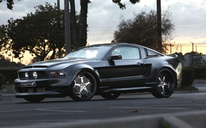 Picture road, the sky, trees, sunset, black, tuning, car, drives, elegance, elegance, Ford Mustang, swagger