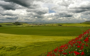 Picture the sky, grass, clouds, trees, flowers, house, hills, Italy, Tuscany