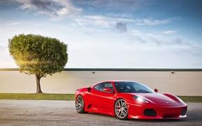 Picture the sky, the sun, clouds, red, tree, F430, Ferrari, red, Blik, Ferrara