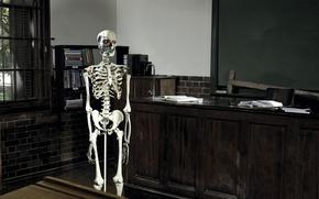 Picture terminator, skeleton, class