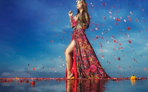 Picture water, girl, flowers, petals, gait