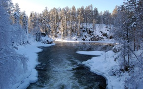 Wallpaper ice, forest, snow, trees, river, Winter, house