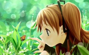 Wallpaper summer, grass, butterfly, girl, Art