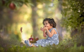 Wallpaper girl, apples, mood, nature
