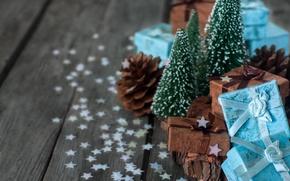 Picture tree, gifts, bump, confetti