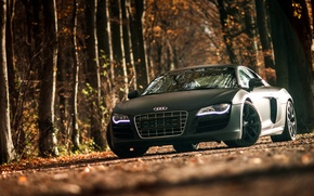 Picture Audi, Audi, sports car, black, front, V10