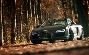 Picture Audi, Audi, sports car, black, front, V10