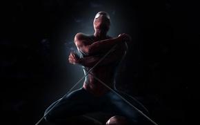 Wallpaper spider-man, web, shadow