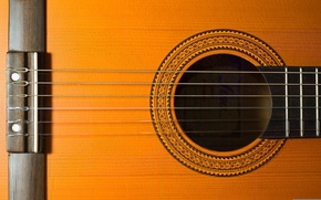 Picture macro, music, guitar