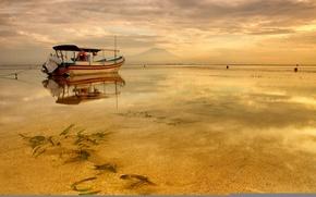 Picture sea, the evening, tide, boat