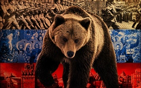 Wallpaper flag, bear, Russia, policy