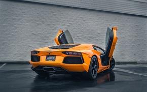 Picture Lamborghini, Auto, Rain, LP700-4, Aventador, Wet, Rear, Asphalt, Doors