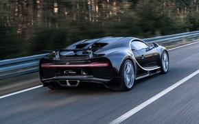 Wallpaper Chiron, Bugatti, Bugatti, supercar, car, back