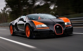 Picture forest, background, Bugatti, Bugatti, Veyron, Veyron, supercar, the front, hypercar, Grand Sport, Vitesse, 16.4, World ...