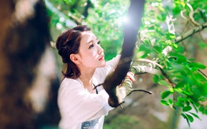 Picture girl, nature, face, branch