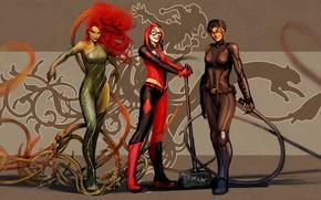 Picture art, dc comics, Catwoman, Selina Kyle, Harley Quinn, Poison Ivy, nebezial, Dr. Pamela Lillian Isley