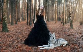 Picture forest, girl, wolf, Dance with the wolves