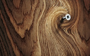 Picture tree, spil, screw