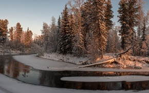Picture Sunset, Winter, Trees, River, Forest, Pisa