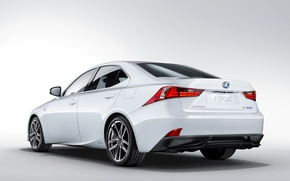 Picture white, background, Lexus, Lexus, back, F-Sport, IS 300h