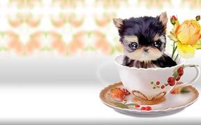Wallpaper flower, rose, baby, art, mug, dog, children's, lorri kajenn the