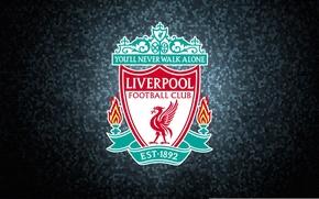 Wallpaper football, Liverpool, football, liverpool