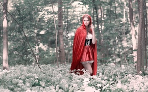 Picture forest, little red riding hood, Red Riding Hood, Cosplay
