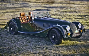 Picture field, grass, 2008, green, supercar, the front, Sport, Morgan, Morgan, 4/4