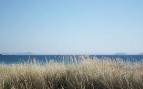 Picture summer, grass, sea, ocean, seascape, islands, sunny