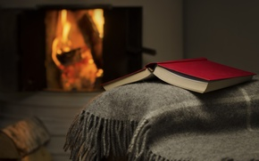 Picture fire, book, fireplace, plaid