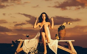 Picture the sky, leaves, sunset, branches, pose, mood, wine, basket, glass, the evening, brunette, shop, hairstyle, …