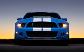 Wallpaper Ford, shelby, gt 500